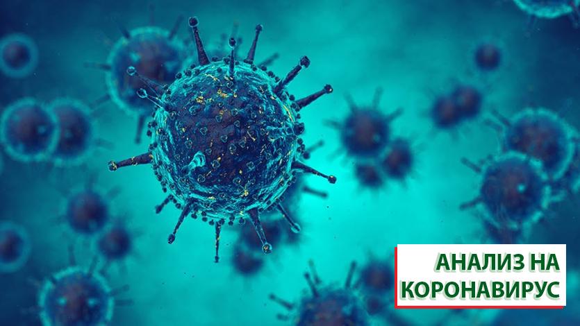 """В ФГБУ """"Поликлиника № 4"""" появилась возможность сдать мазок на коронавирус"""